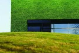 penamaderas_casa verde